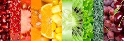 El nuevo Bioterrorismo Act de los EEUU y sus implicaciones para exportadores de alimentos