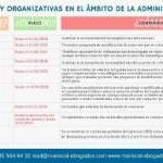 Tabla resumen de las medidas procesales y concursales de la Ley 3/2020